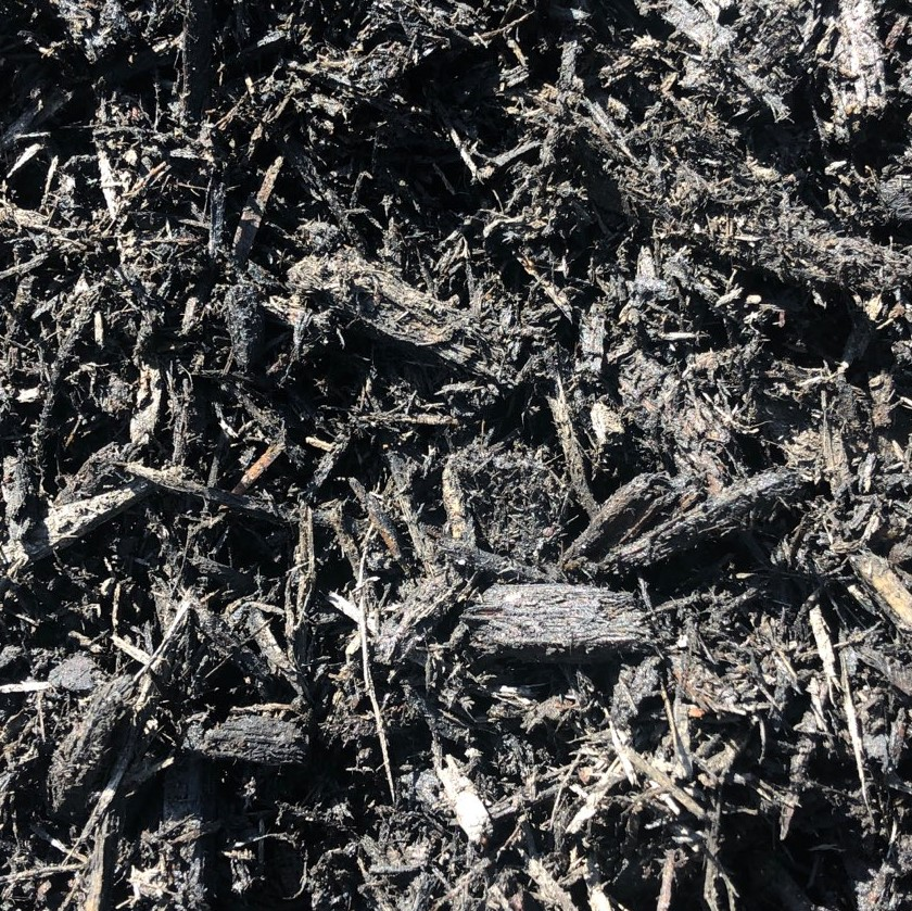 WEB BLACK MULCH CLOSE UP