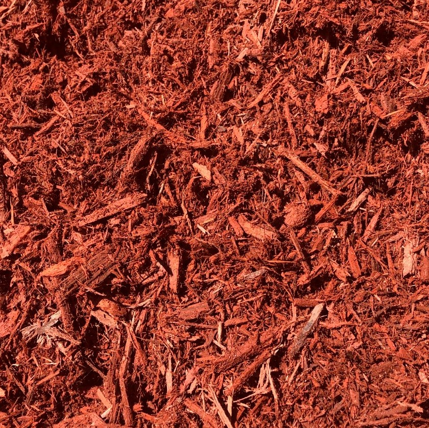 WEB RED MULCH CLOSE UP
